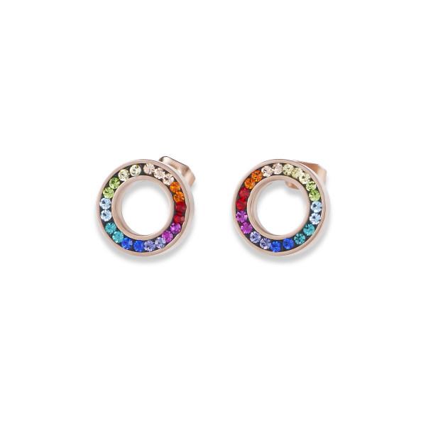 Ohrringe Ring Kristall Pavé multicolor small & Edelstahl roségold & silber