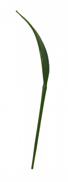 Bowlespieß Blatt Variante 1