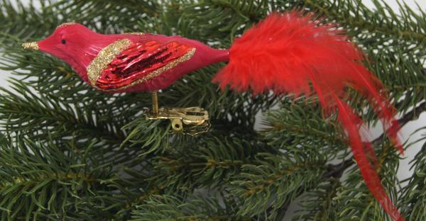 Eisrot Waldvogel mit echter Feder