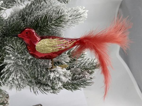 Rot Waldvogel mit echter Feder