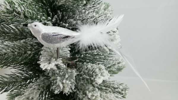 Eisweisssilber Vogel mit echter Feder